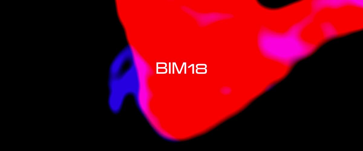 BIM18