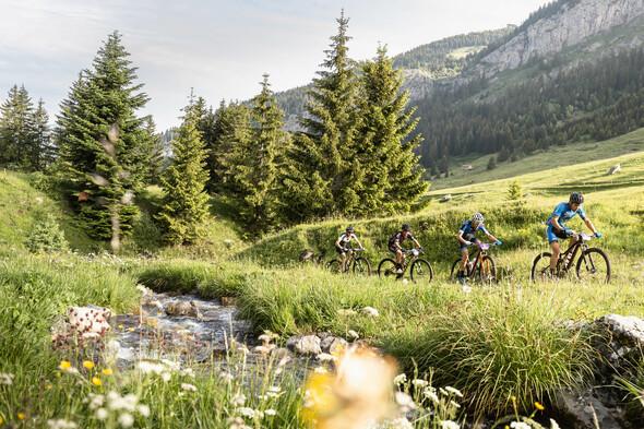 Alps bike festival