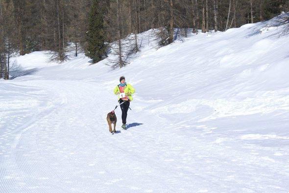 10e Trail de Noël