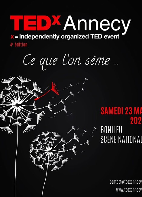 TED X ANNECY - REPORT
