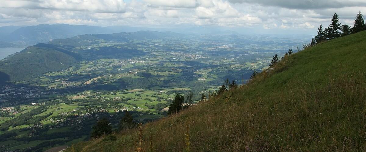 Montcel